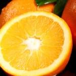 Close up of fresh orange fruit — Stock Photo