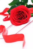 Red rose and holiday envelope — Stock Photo
