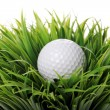 Golf ball in grass — Stock Photo #9641514