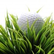 Stock Photo: Golf ball in grass