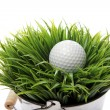 Golf ball in grass — Stock Photo #9641603