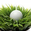 Golf ball in grass — Stock Photo #9641608