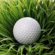 Golf ball in grass — Stock Photo #9641618
