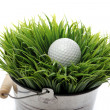 Golf ball in grass — Stock Photo #9641627