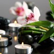 Spa and wellness — Stockfoto