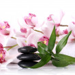 Spa stones and beautiful orchid — Stock Photo