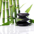 Spa stones and bamboo leaves — Stockfoto
