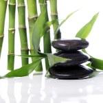Spa Steine und Bambusblätter — Stockfoto