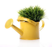 Watering can and grass — Stock Photo