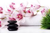 Spa taşlar ve güzel orkide — Stok fotoğraf