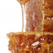 Fresh honeycombs — Stock Photo
