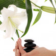 Spa hands over white background — Stock Photo #9796125