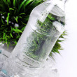Fresh water in bottle — Stock Photo