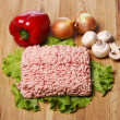 Minced meat and vegetables — Stock Photo