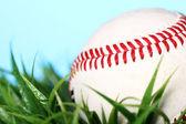 棒球在草丛中 — 图库照片