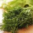Fresh green dill — Stock fotografie