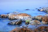 海岸線 — ストック写真