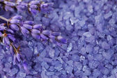 Lavender flowers on a background salt bath — Foto de Stock
