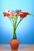 Beautiful flowers of freesia — Stock Photo