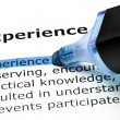 Stock Photo: Experience highlighted in blue