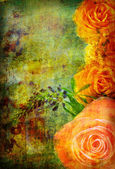 Roses on the old grunge texture — Stock Photo