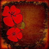 Poppies on the old grunge texture — Stock Photo