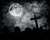 Chauves-souris volent dans la nuit — Photo