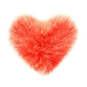 Fluffy heart — Stock Photo