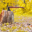 Old hatchet in wooden log — Stock Photo