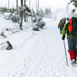 On winter hiking — Stockfoto