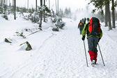 En excursiones de invierno — Foto de Stock