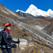 Woman trekking in Himalaya Mountains — Stock Photo #9107158