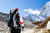 Vrouw trektochten in de himalaya mountains — Stockfoto