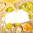 Beautiful exotic shell, stones, crystals  with banner add - Stockfoto