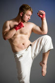 Portrait of boxer isolated — Stockfoto