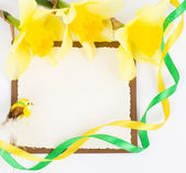 Picture frame with yellow flowers on white background — Stock Photo