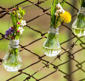 Spring flowers in glass bulbs on fence — Stock Photo