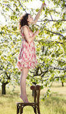 Beautiful woman on a chair in a spring garden — Stock Photo