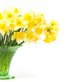 Beautiful spring yellow flowers in a glass vase — Stock Photo