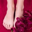 Healthy and elegant female feet with the orchid — Stock Photo #8973908