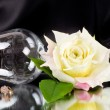 Beautiful wineglass with white rose - Stock Photo