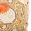 Stock Photo: Beautiful exotic shell and stones, pearls on sand