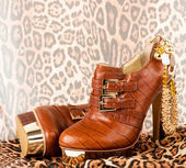 Sexy fashionable shoes with golden jewelry on background. — Стоковое фото