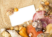 Beautiful exotic shell, stones, crystal with banner add on sand — Stock Photo