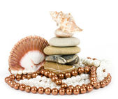 Beautiful exotic shell and stones, pearls on white background. — Stock Photo