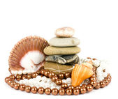 Shell with pearl necklace over white background — 图库照片