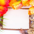 Quail eggs and spring flowers with banner add — Stock Photo