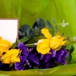 Banner add with spring tulips — Stockfoto