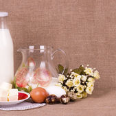 Milk, cheese and eggs on table — Stock Photo