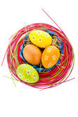 Easter background. Macro shot of painted eggs and easter decor — Stock Photo